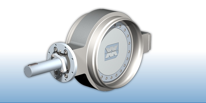 quadax Buttweld Type Butterfly Valve